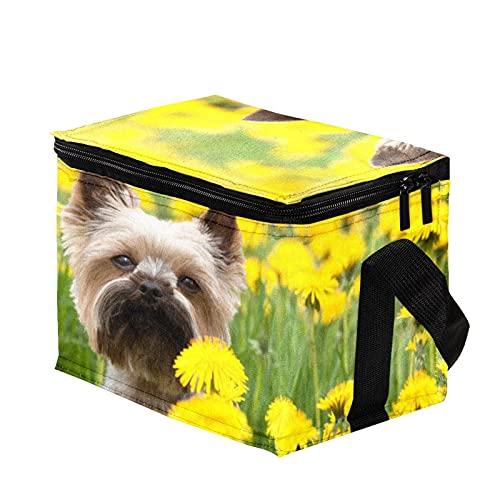 Bolsa Termica,Bolsa de Almuerzo,Bolsa de Pícnic ,Bolsa Nevera Portatil ,Bolsa Térmica Comida,Bolsa de Almuerzo Térmica Impermeable Yorkshire Terrier floreciendo prado