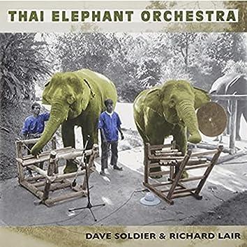 The Thai Elephant Orchestra