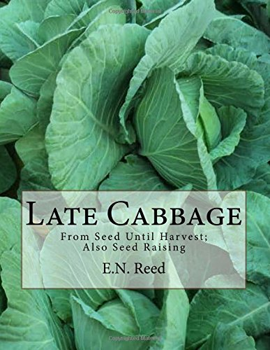 Late Cabbage: From Seed Until Harvest; Also Seed Raising