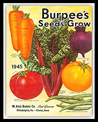 nobrand Plant Vegetable Seed Catalogue Cover Garden Greenhouse Allotment Tin Sign 8x12 in Wall Decor