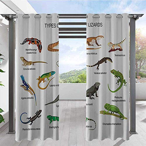 Custom Outdoor Curtain Lizard Family Design On Plain Background Primitive Reptiles Camouflage Exotic Creatures Home Anti-Uv Windproof Curtains Perfect for Your Pergola Multi W120 x L108 Inch