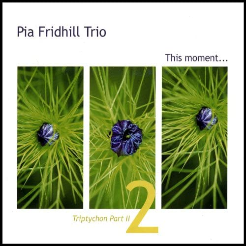 Pia Fridhill Trio