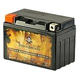 Chrome Battery YTX12A-BS lead_acid_battery