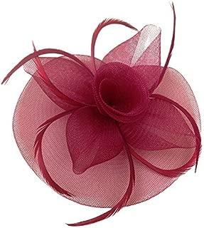 Women's Vintage Flower Feather Mesh Net Fascinator Hair Clip Hat Party Wedding