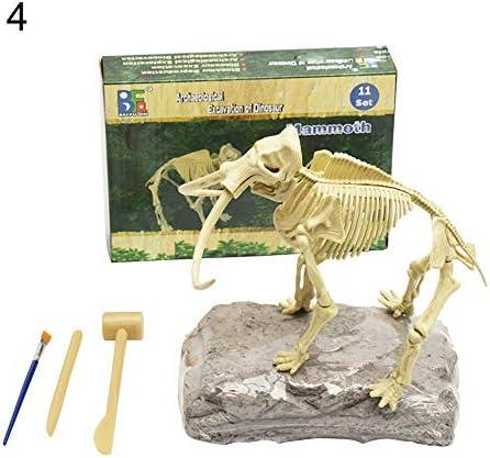 Glamsville Kit De Excavación De Esqueleto De Dinosaurio Fósil Para Excavación De Bricolaje Para Niños Educativos Kitchen Dining Amazon Com