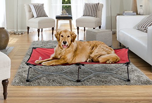 Carlson Pet Products Carlson Elevated Dog Bed, Indoor or...
