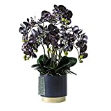 Blumensträuße aus Kunststoff Große künstliche Orchidee Phalaenopsis, Künstliche Pflanzen in Eisenvase, Seide gefälschte Blumen für Party Office Gartentisch Home Decor (lila) Gefälschte Blumensträuße