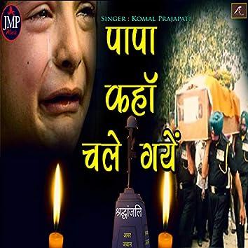 Papa Kaha Chale Gaye (Hindi)