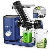 AMZCHEF Estrattore di Succo a Freddo, Estrattore di frutta e verdura con Motore Silenzioso e Funzione Inversa, funzione anti-intasamento(blu)
