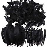 250 plumas naturales de colores llamativos para manualidades y atrapasueños, ideal para bodas, fiestas y decoración (3 tamaños) negro