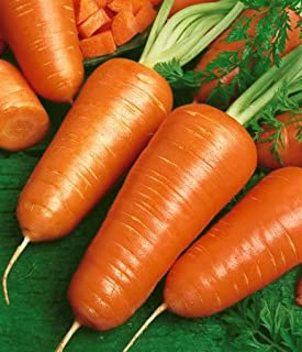 Premier Seeds Semillas para Verduras