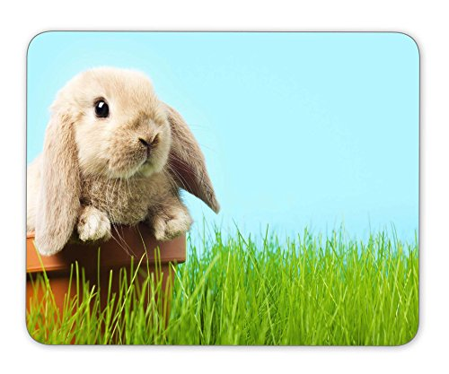 KingKang Baby Easter Bunny on Spring Green Grass Mouse Pad Office Mouse Pad Gaming Mouse Pad Mouse Mat Mousepad Non-Slip Rubber Backing