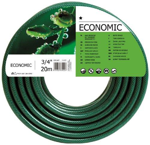 Terra Tuyau d'arrosage Economic, Vert, 3/4\