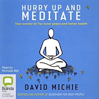 Hurry Up and Meditate audiobook cover art