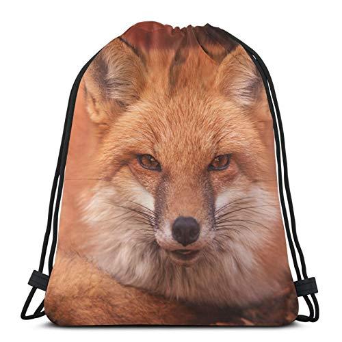 Affordable shop Fox Red Bozal Look Mochila con cordón, ligera, gimnasio, viajes, yoga, casual, bolsa de hombro para senderismo, natación, playa