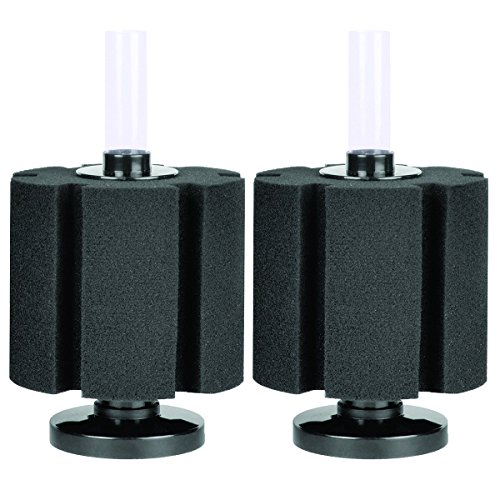 BACTO-SURGE HIGH DENSITY FOAM FILTER (2-Pack)