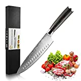 Diswoe Kitchen Knife with Sharp Blade Hollow Edge Premier German High Carbon Stainless Steel with Ergonomic Handle