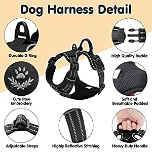 SCENEREAL Dog Harness and Leash Set, Reflective No Pull Dog Harness Escape Proof for Medium Large Dogs Outdoor Walking Training Hiking