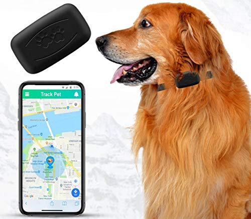 NACRL Pet GPS Tracker, No Monthly Fee, Free App, Real-Time Tracking Collar Device, APP Control, Location Tracking Collar for Dogs, Cats, Waterproof, Small, Lightweight (35 g), U.S. Nationwide Coverage