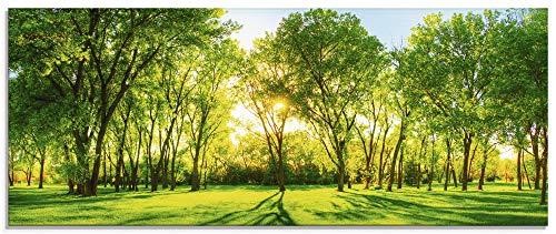Artland Glasbilder Wandbild Glas Bild einteilig 125x50 cm Querformat Natur Wald Sonne Landschaft Frühling Wiese Bäume Grün T2OP