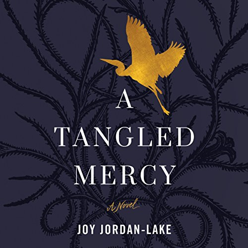 A Tangled Mercy audiobook cover art