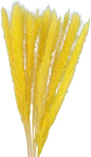 kloiu96 Dried Small Pampas Grass Fake Bouquets, Brightly Colored & Visually Realistic Artificial Plants - for DIY Bedroom Living Room Party Baby Shower Home Decorations