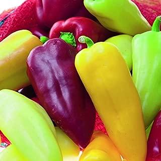 Pretty N Sweet Bell Pepper Seeds 150 Seeds Upc 643451295986