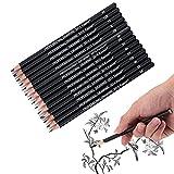 Matite Schizzi Grafite Professionali Set Matite Schizzi Disegno Grafite 14Pcs Per Disegnare,Schizzi,Ombreggiature, Per Principianti E Artisti Professionisti 12B 10B 8B 7B 6B 5B 4B 3B 2B B Hb 2H 4H 6H