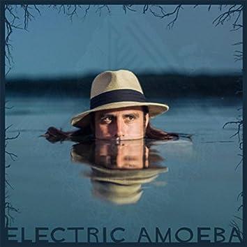 Electric Amoeba