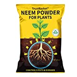 ***Buy Original, sold and fulfilled by TrustBasket*** Neem Powder is used as a soil supplement which enriches the soil and lowers nitrogen loss. Neem Powder works as an organic fertilizer as well as a natural nematicide. It improves the soil texture ...