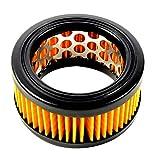 HQRP Filtro Aria con prefiltro Compatibile con Echo 130300-39730 per Echo CS-3500 CS-3501 CS-3700 CS-3700ES EC-370ES CS-4200CS-4200ES CS-420ES Motosega