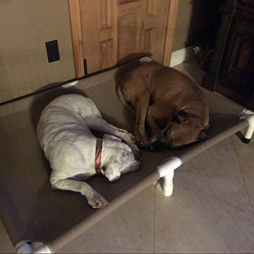 Dianes K9 Creations Inc. Extra Large Dog Bed, Dogs Up to 200 Pounds 1 1/2' PVC Pipe Frame, Size 39'x56'x10' Color Hem Beige Canvas, Handmade XX Large Dog Bed, Big Dog Beds