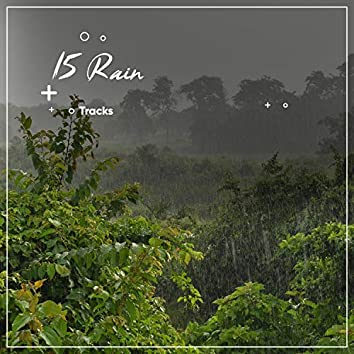 15 Sounds of Rain: Tranquility, Serenity, Mindfulness, Nature, Sleep,Relaxation, Meditation
