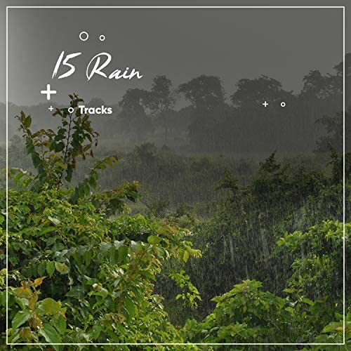 Nature Sounds, Rain Sounds & Relaxing Music Therapy