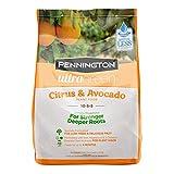 Pennington Plant Food