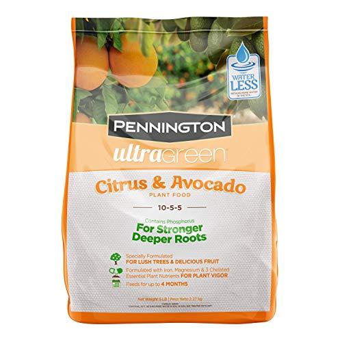 Pennington 100525941 UltraGreen Citrus & Avocado 10-5-5 Plant Food, 5 lb