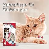 Beaphar 79015 Dog-A-Dent Zahnbürste - 6