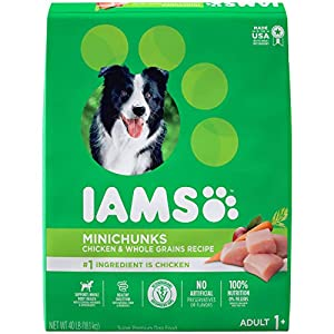 IAMS PROACTIVE HEALTH Adult Minichunks Small Kibble High Protein Dry Dog Food with Real Chicken, 40 lb. Bag