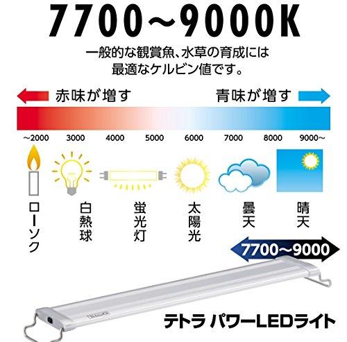 テトラ(Tetra)パワーLEDライト60Mサイズ(1個)