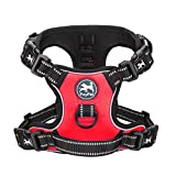 PoyPet 2019 Upgraded No Pull Dog Harness with 4 Snap Buckles, 3M Reflective with Front & Back 2 Leash Hooks and an Easy Control Handle [NO Need Go Over Dog's Head] (Red,L)