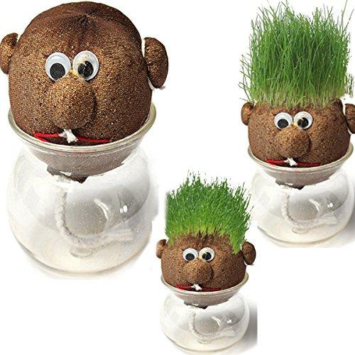 Faway Herbe poupée plantes en pot Mini DIY magique Herbe Plant Pot Herbe Head Doll Intérieur Plante en pot