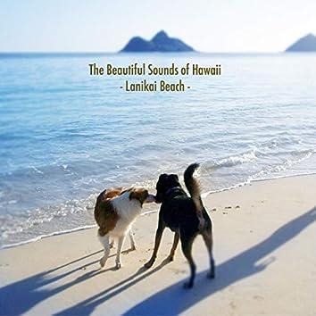 The Beautiful Sounds of Hawaii -Lanikai Beach-