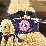 PENVEAT Pug Harnais Laisse Ceinture pectorale Plomb Gilet Pet cardiomètre Pet Supplies Harnais pour Chien Chihuahua Dog Set Leash Pas Cher, C, XS