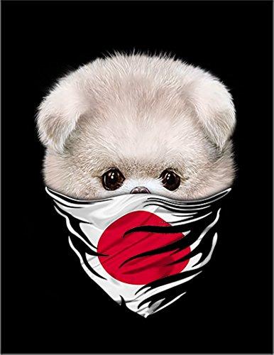 【ポメラニアン バンダナ 日の丸 いぬ 犬】 余白部分にオリジナルメッセージお入れします!ポストカード・はがき(黒背景)