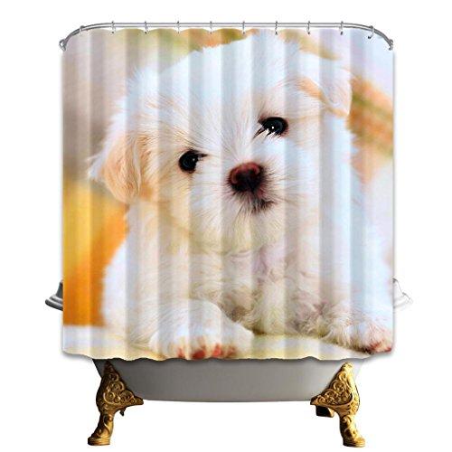 LAundNA Nette Tiere Dekor Digtal gedruckt Polyester Duschvorhang Liner für Bad wasserdicht & Schimmel , c , 180*210
