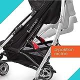 3Dlite Black Convenience Stroller (with Silver Frame)