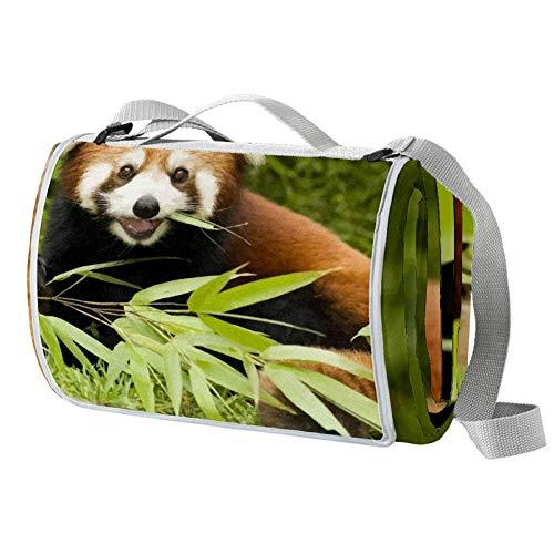 LORVIES - Manta de picnic con diseño de panda roja y resistente al moho y al moho, ideal para picnics, playas, senderismo, viajes, caravanas y salidas