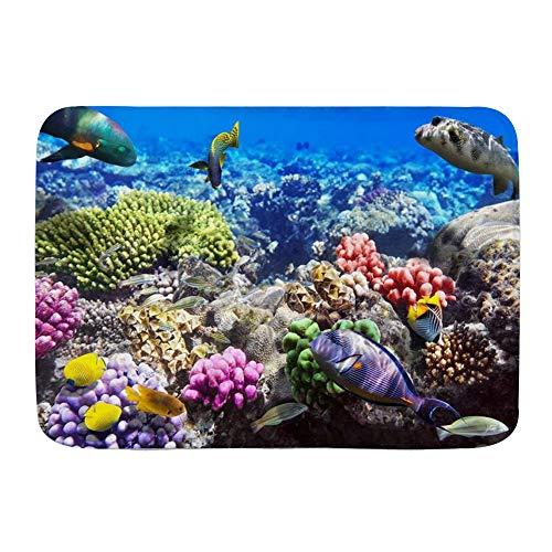 QIUTIANXIU Badezimmerteppich rutschfest - Weiche Badematte,Lot Hurghada Riff Korallenfisch Rot Ägypten Tiere Wildtiere Natur Ozean Leben Aquarium Hawaii Unter Wasser,Badvorleger,Badeteppich,75 * 45cm
