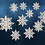 CQI 3D Snowflake Hanging Garland Winter Wonderland Party Decorations - Glitter Snowflake Hanging Decoration Winter Holiday/New Year/Christmas Party Supplies Decoration(6PCS)
