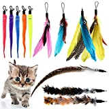 BINGPET Cat Feather Toys Replacement - 12 Pack Cat Interactive Toys for Indoor Cats, Multi...